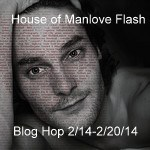 House of Manlove Flash, image courtesy of http://www.flickr.com/photos/hi-phi/99689736/